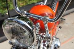 115th Anniversry of Harley-Davidson